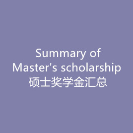 The summary of Master's scholarsh