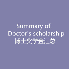 The summary of Doctor's scholarsh
